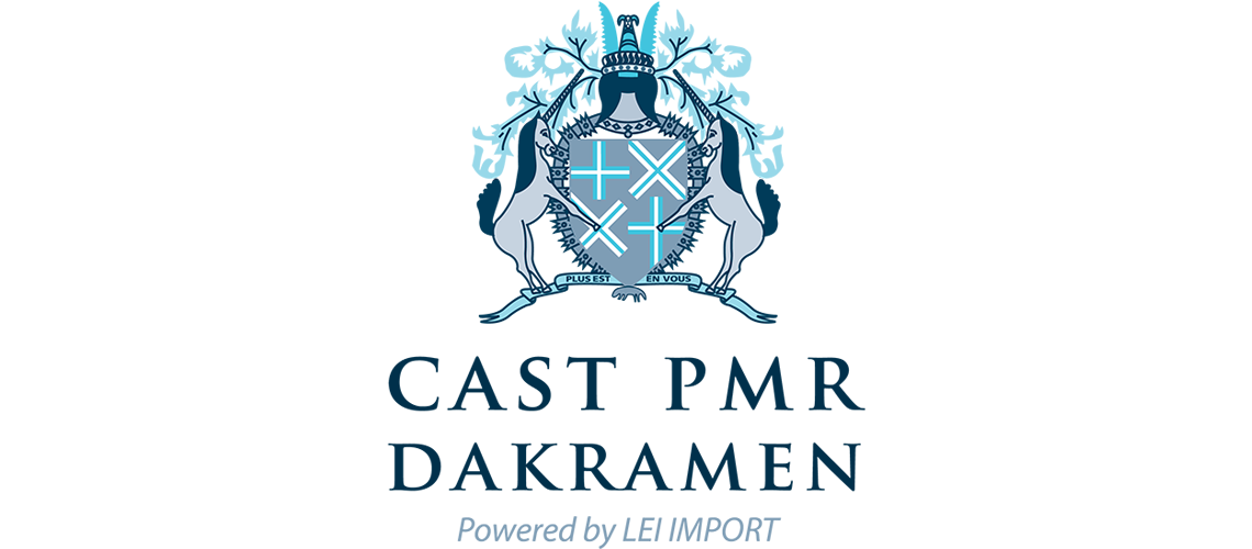 Logo van Lei Import Dakramen BV